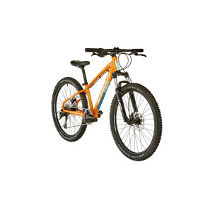 "Serious Shoreline 24"" Disc orange/blue"